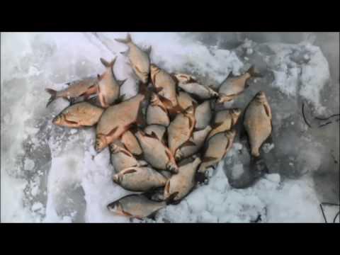 рыбалка на омской области видео 2016 год