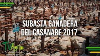 Subasta Ganadera del Casanare 2017- TvAgro por Juan Gonzalo Angel