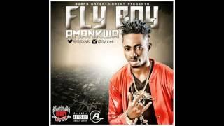 FlyBoy - Amankwa