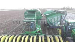 Preston Turner Farms- Cotton Harvest 2015- Hockley County