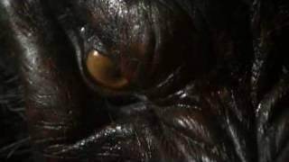 Never Cry Werewolf - Werewolf Transformation