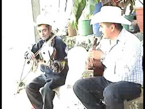 Violinista Guillermo Guevara
