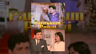 Parakkum Paavai | பறக்கும் பாவை | Full Tamil Movie | 1966 | M. G. R | B. Saroja Devi | T.R.Ramanna