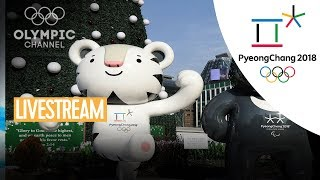 LIVE 🔴 | Olympic Channel News | PyeongChang 2018