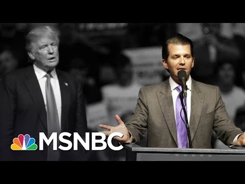 White House In Chaos After Donald Trump Jr. Releases Emails | The 11th Hour | MSNBC
