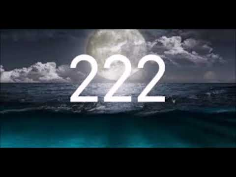Xxx Mp4 The Meaning Of 222 In Numerology 3gp Sex