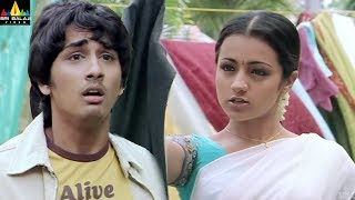 Nuvvostanante Nenoddantana Movie Trisha & Siddharth Comedy | Telugu Movie Scenes | Sri Balaji Video