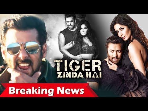 Xxx Mp4 Salman नहीं करेंगे Tiger Zinda Hai का Promotion Vogue Cover पर Salman और Katrina का Sexy Pose 3gp Sex