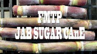 FMTP-JAB SUGAR CANE