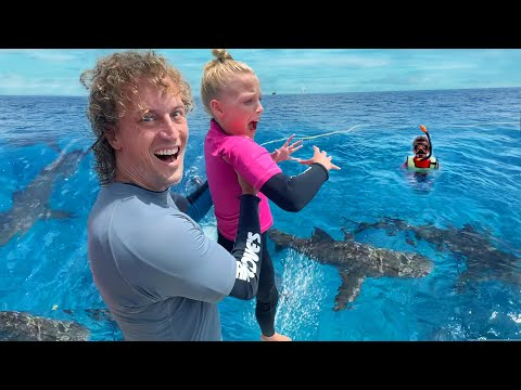 Swimming with SHARKS Overcoming Fear