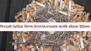সিগারেট তৈরিতে বিশেষ উপাদান,যা শুননে আপনি আঁতকে উঠবেন!(bangla health tips)