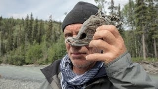River Monsters | Season 7 | Episode Special | Killer Treasures Special