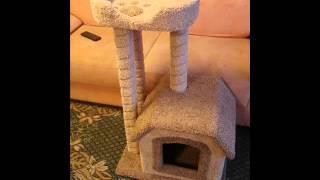 Домики когтеточки для кота своими руками