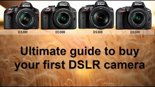 The ultimate guide for what DSLR camera to buy