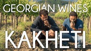 Kakheti, the wine-making region of Georgia - Cinematic travel Vlog by Tolt #6