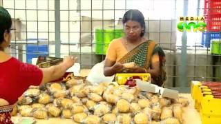 kerala soaps 444