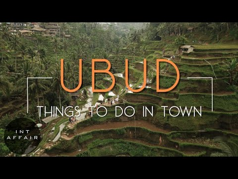 3 THINGS EVERY TOURIST WILL EXPERIENCE IN UBUD BALI