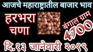 हरभरा बाजार भाव ### चणा के दाम *** Bangal Gram price