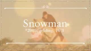 Snowman - The True Gent.