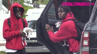 Ian Connor Takes Kendall Jenner's Dog Mew Out For Bathroom Duty In West Hollywood 1.2.17