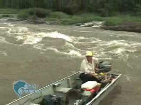 Pescaria de Dourados no rio Pardo com Juninho parte 2
