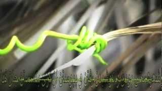 """""""پاییز آمد"""" ۲ همراه با متن ترانه -  Butterfly-Mix /Fariba G"""