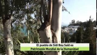 Madrileños por el mundo: Túnez