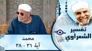 الشيخ الشعراوي | تفسير سورة محمد، (آية ٣١-٣٨)