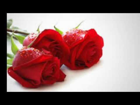 Bolehkah Melihat Aurat Vital Istri atau Suami