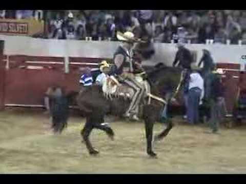 caballo bailador en las fiestas de autlan jalisco