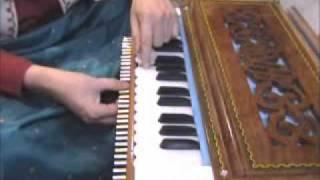 22 Shruti Harmonium structure