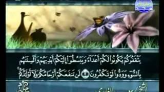 القرآن كامل الجزء ( 28) بصوت القارئ سعد الغامدي