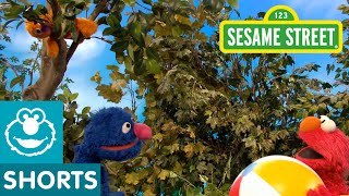 Sesame Street: Elmo and Grover Must Help Baby David