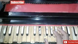 How to play NAGIN DHUN/BEEN on harmonium very easy method