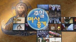 2019년 1월 20일 주일미사중계 연중 제2주일 서울대교구 신사동 성베드로 성당