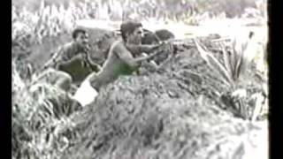 Muktijoddha fight against pakistani army