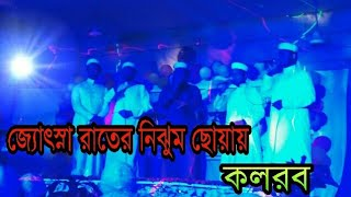 Josna rater nijhum choya | কলরব