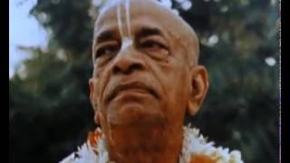 Srila prabhupada Your Ever Well Wisher (Telugu)