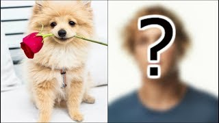 CAN YOU GUESS THE YOUTUBER BY THEIR DOG?