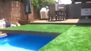 A nice pool in the garden !