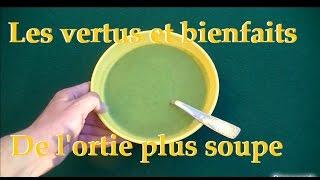 L'ortie, les vertus et les bienfaits pour la santé, plus recette de la soupe aux orties..
