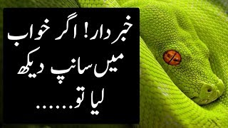 This Is What Happens When You See Snake in Your Dreams   The Urdu Teacher