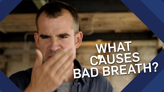 What Causes You to Have BAD BREATH? | Brit Lab