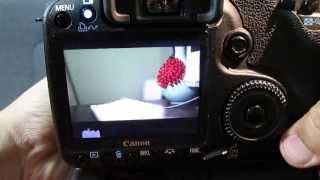50D Magic Lantern Guide + Quick HD Video Test
