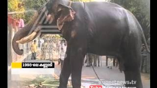 Fireworks explosion and Elephant attack in kerala |Kannadi 24 April 2016