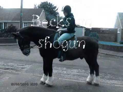 Xxx Mp4 My Horse Shogun XXx 3gp Sex