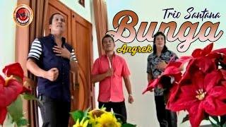 TRIO SANTANA-Bunga anggrek