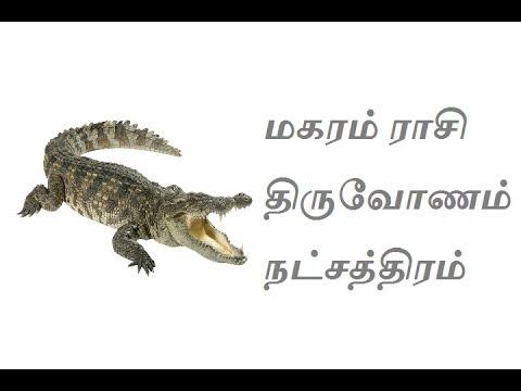 Xxx Mp4 மகரம் ராசி திருவோணம் நட்சத்திரம் Makaram Rasi Thiruvonam Natchatram 3gp Sex
