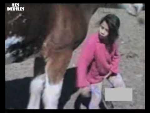 Petite fille owned par un cheval