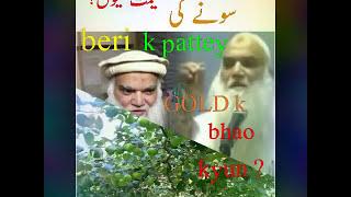 Beri k pattey 🌿 soney  🌟k bhao 💰 kyun? Zinda murda sab ko faida ? Sheikh IQBAL Salafi.